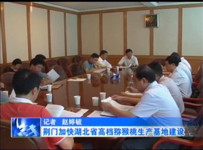 湖北省高档猕猴桃生产基地计划今年8月翻耕植苗